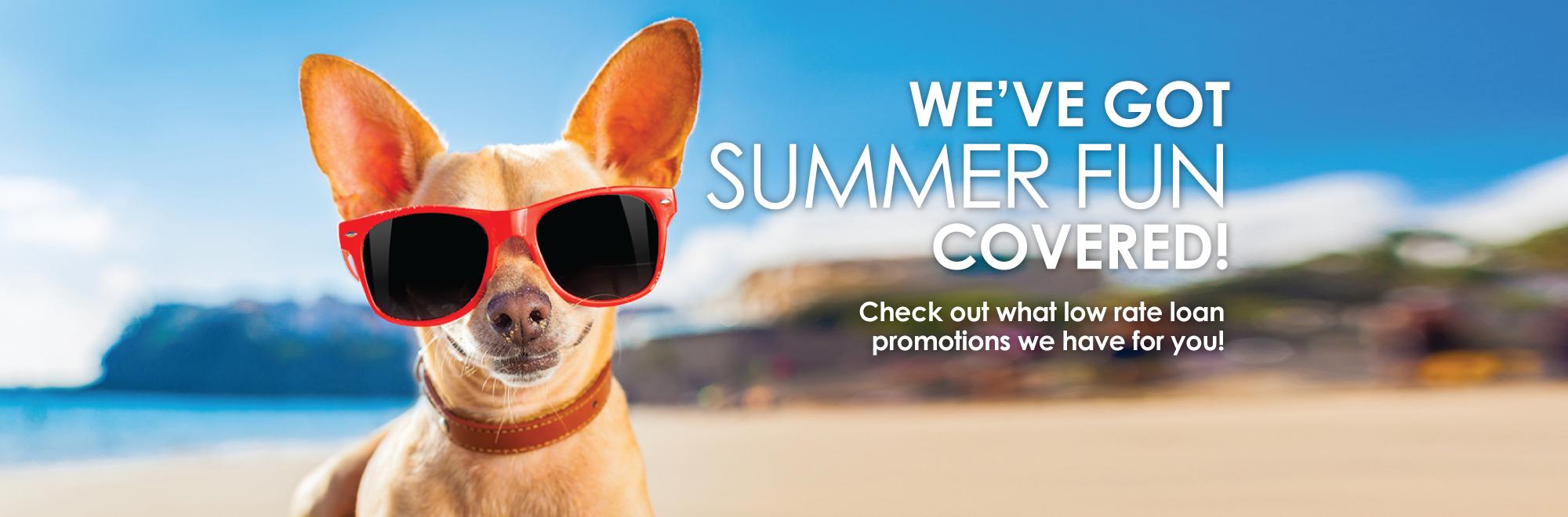 Summer fun vacation loan banner image